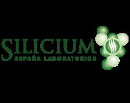 clientes-silicium