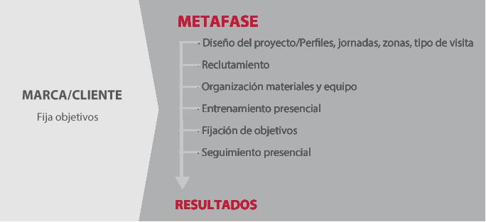 fuerza-de-ventas-externa-metafase