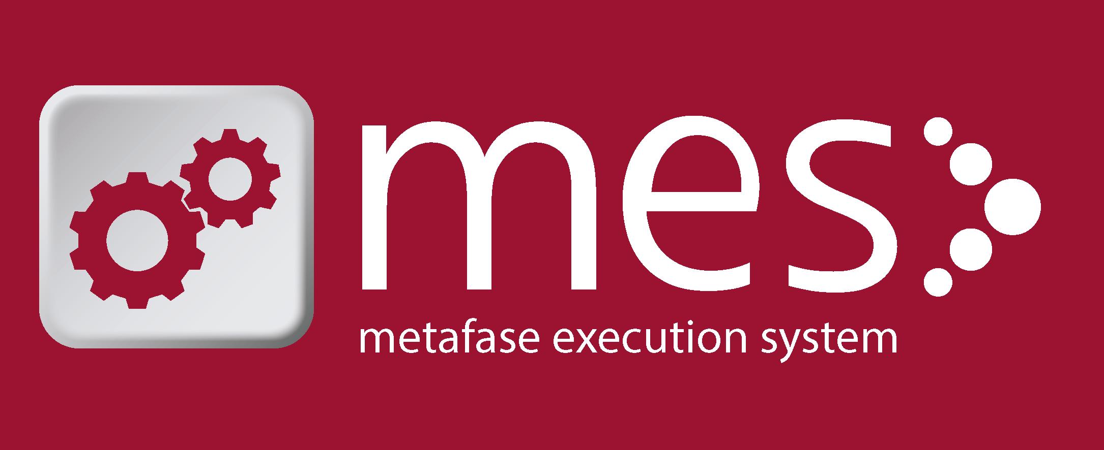 metafase-extecution-system