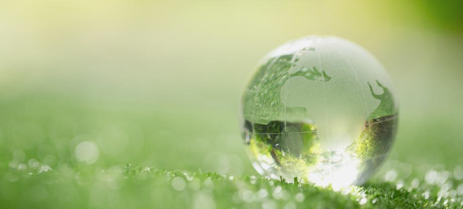 sostenibilidad gran consumo